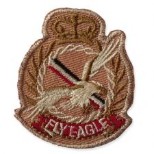 FLY EAGLE BADGE MOTIF IRON ON EMBROIDERED PATCH APPLIQUE